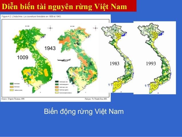 Bản đồ biến động rừng việt nam qua các thời kỳ