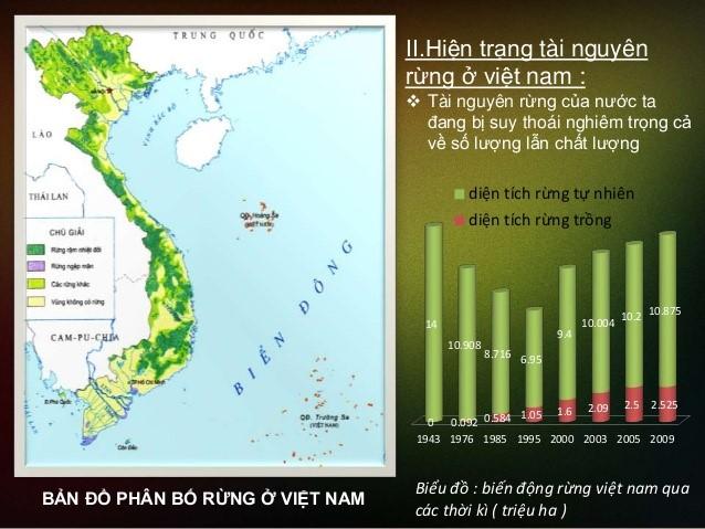 Hiện trạng tài nguyên rừng ở Việt Nam