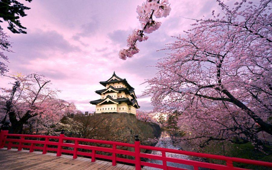 Địa điểm du lịch Hàn Quốc
